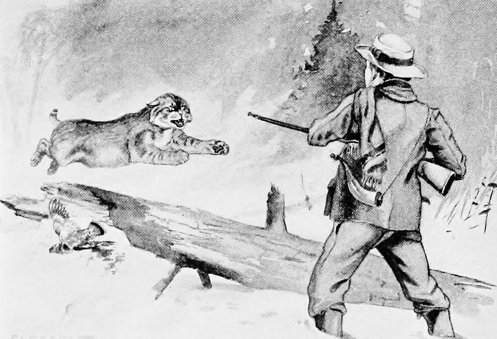 Illustration from The Trial to the Woods, by Clarence Hawkes; courtesy of the Internet Archive Book Images